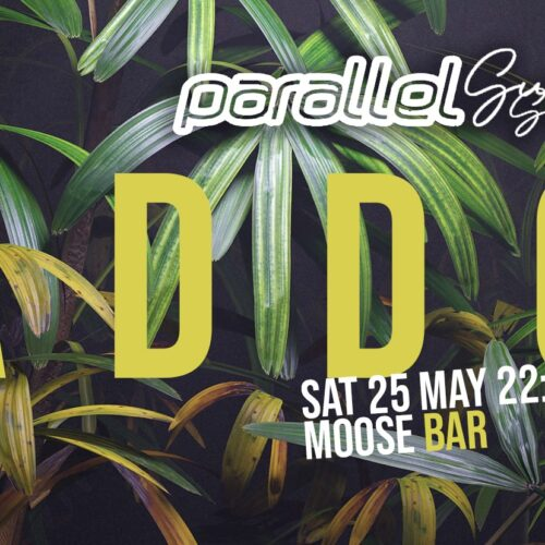 Addo aduce vara la Satu-Mare! Parallel Summer Session @ Moose Bar!