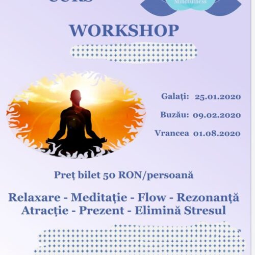 Mindfulness Tabara Workshop & Masterclass